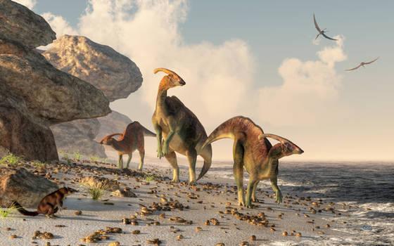 Prehistoric Beachcombers