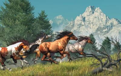 Wild Horses by deskridge