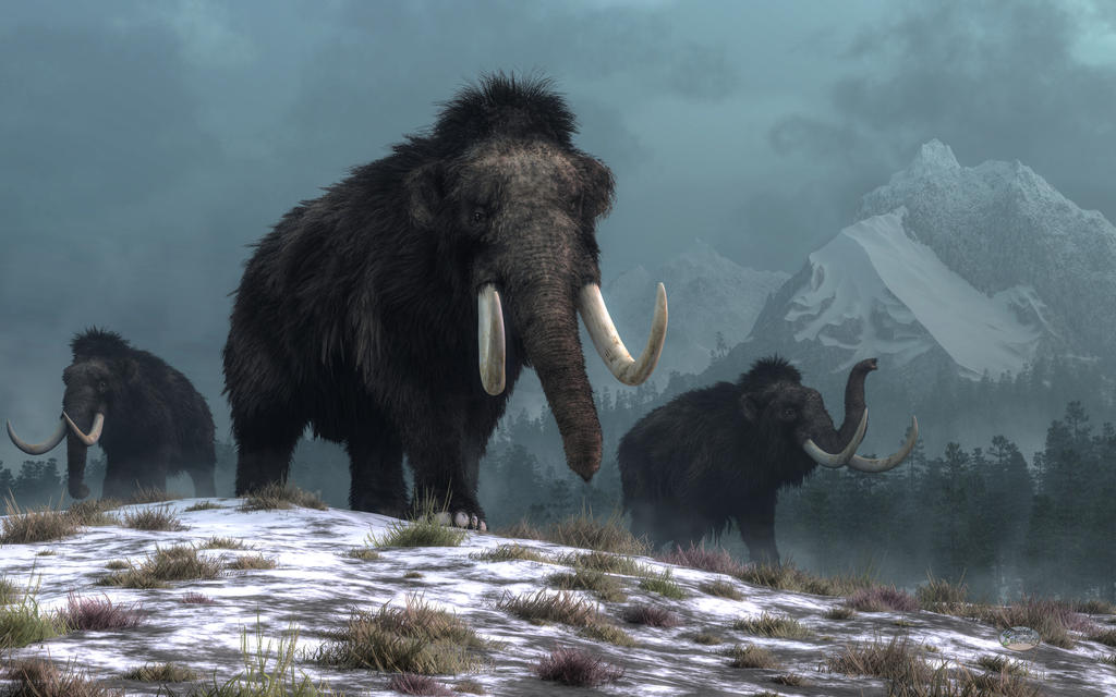 Lords of the Ice Age
