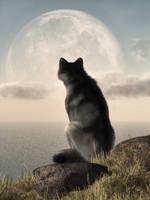 Wolf Watching The Moonrise by deskridge