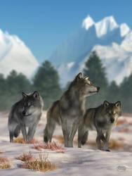 Three Wolves by deskridge