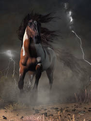 Mustang Horse in a Storm by deskridge