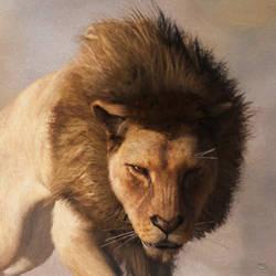 Portrait of a Lion by deskridge