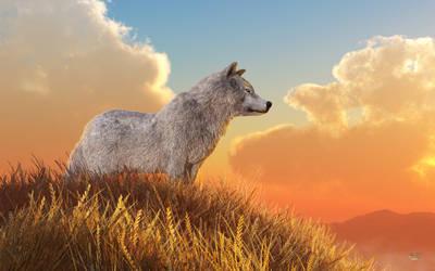 White Wolf by deskridge