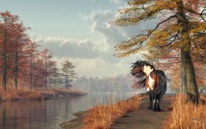 Pinto Horse on a Riverside Trail by deskridge