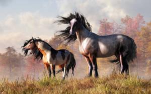 Horses in Fall by deskridge