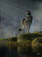 Timber Wolf by deskridge