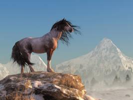 Mustang by deskridge