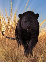 Panther by deskridge