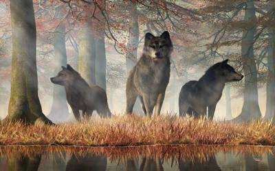 The Wolves of Autumn by deskridge