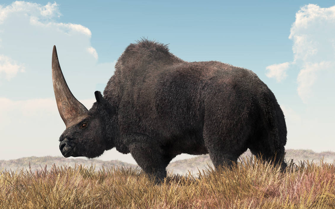 Elasmotherium by deskridge