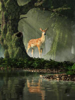 Fawn in the Forest by deskridge