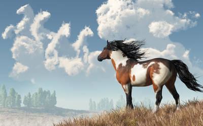 Spirits of Mustangs Past