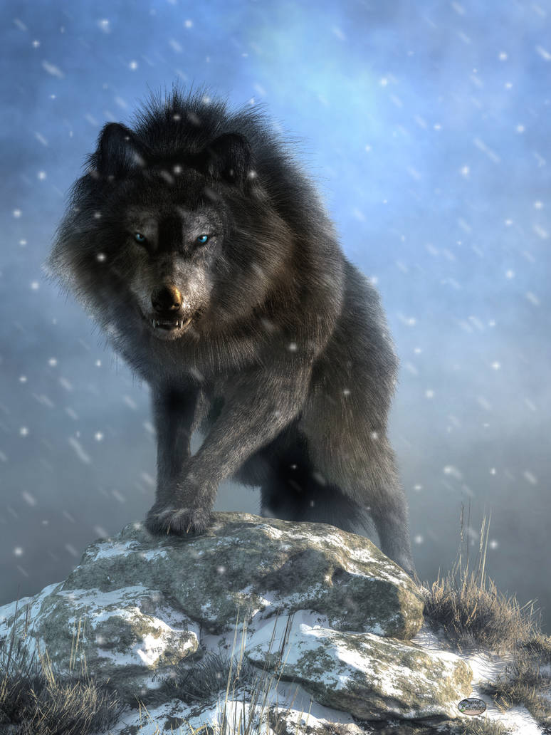 Dire Wolf by deskridge