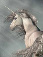 Portrait Of A Unicorn