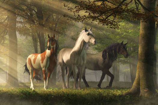 Three Wild Horses in the Forest