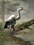 Great Blue Heron