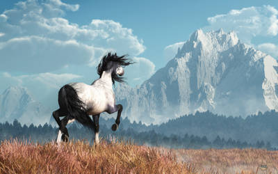 Blue Roan and Distant Mountain