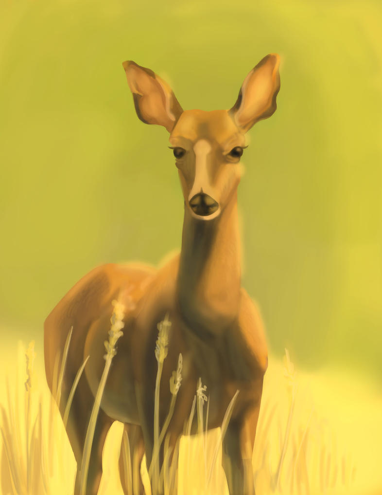 Deer by TheMightySmoosh