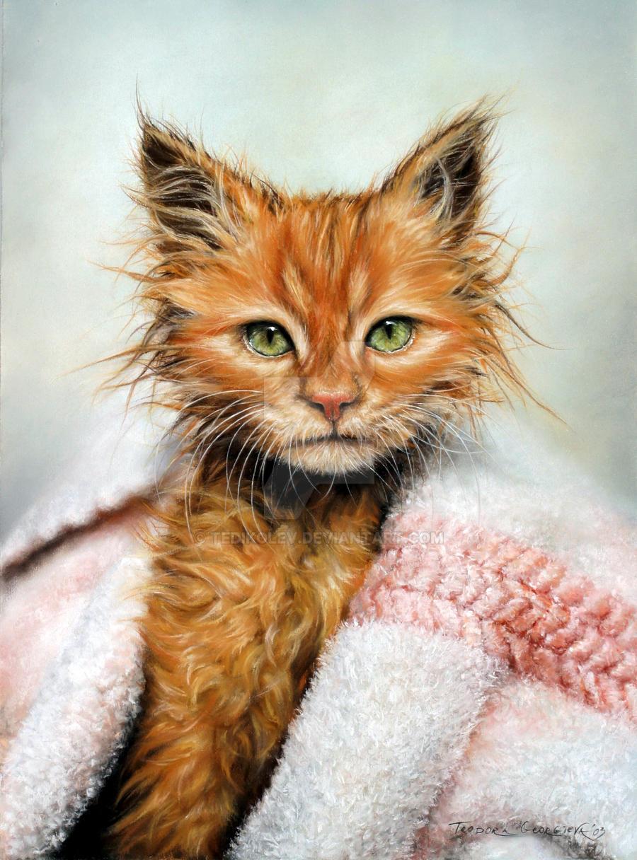 Pussycat by tedikolev