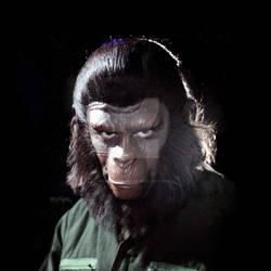 Caesar, Ruler of Ape City