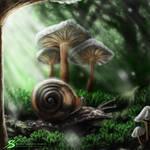Mushroom Snail.
