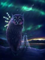 Owlish Fairytale. by Zaellrin