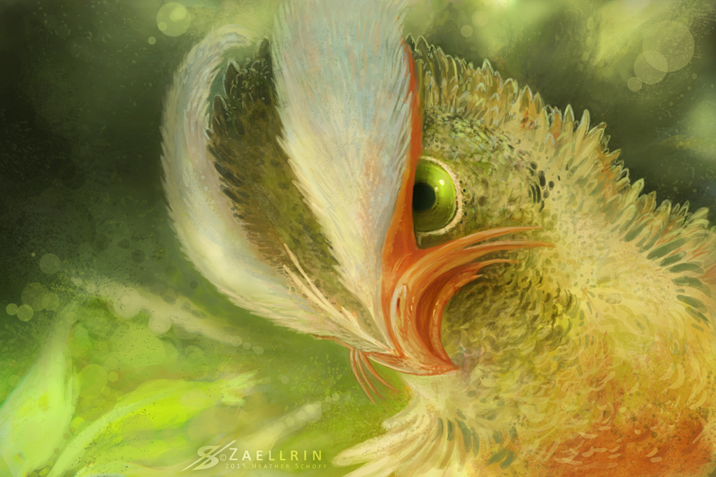 Angry Bird. by Zaellrin