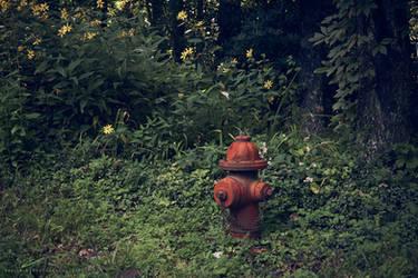 Forest Hydrant by Zaellrin