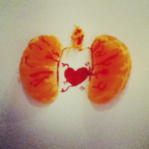 heart+lungs by Makodash