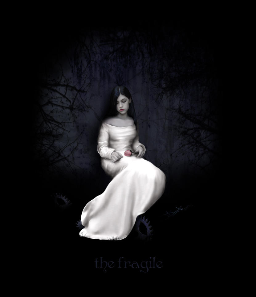 the fragile by lady-alessandra
