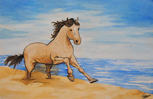 Beach Horse by Benry