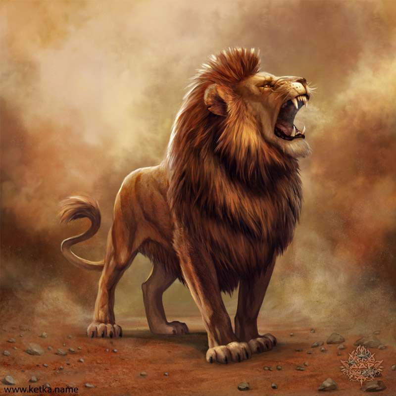 lion by Ketka by Ketka on DeviantArt