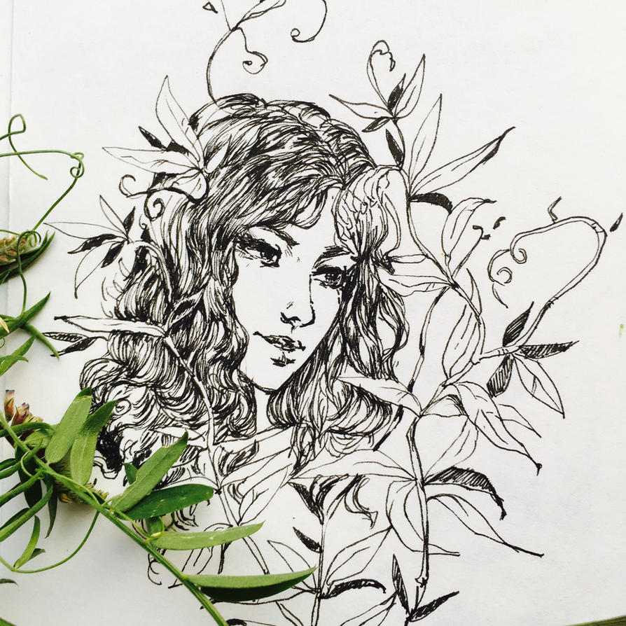 Bindweed by Ketka