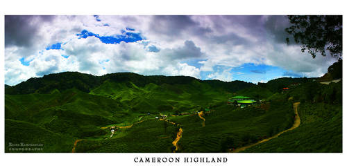 Cameroon Highland by r1q1