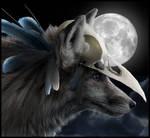 Crow Photomanipulation