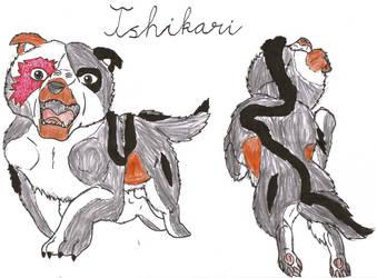 Raven contest: Ishikari