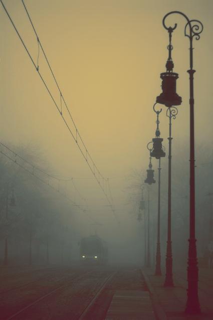 Foggy by Econita