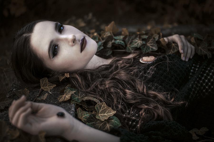 .black beauty II. by Econita