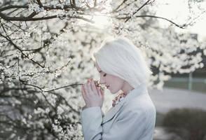 White renewal by Econita