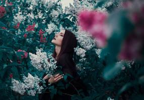 Enchantress' Garden II