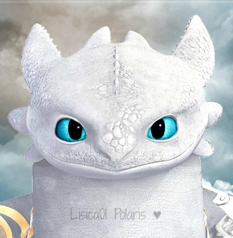 White Night Fury Polaris1 By Lisica01 On Deviantart