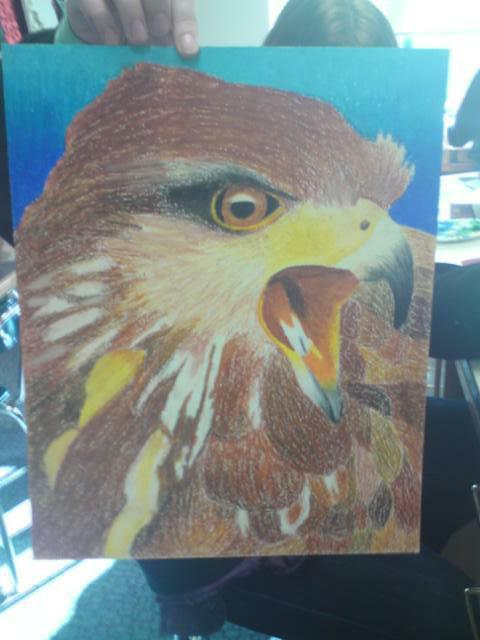 Fierce Hawk by jesska1