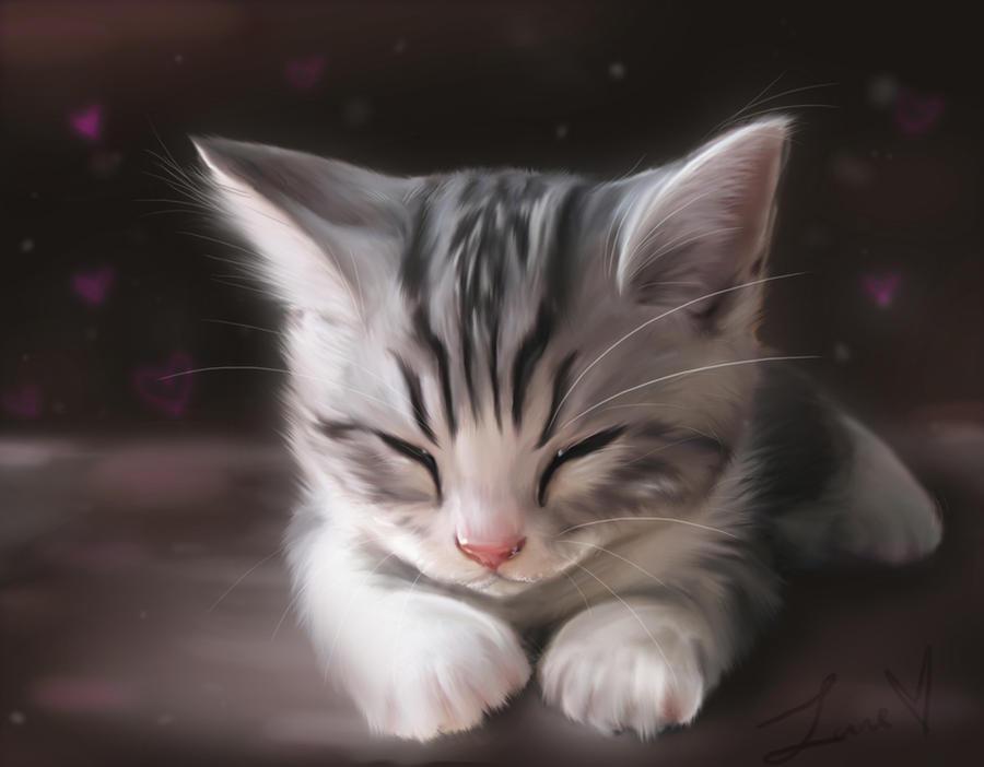 Kitten by lane-nee-chan