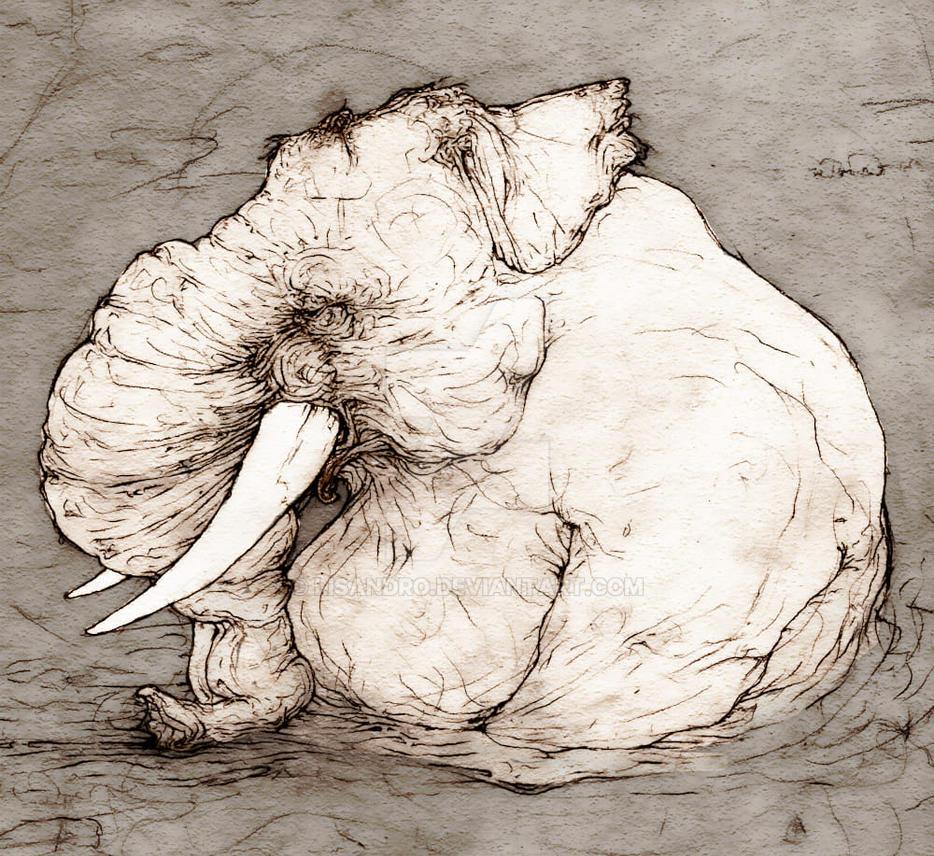 Elephant-river by lisandro