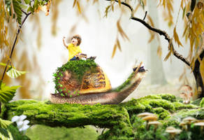 Snail by jes19