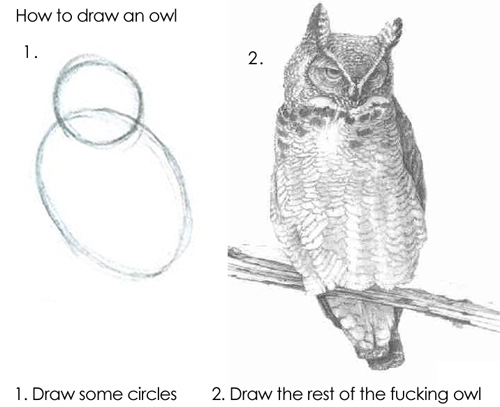 How to draw an owl by RayFan9876