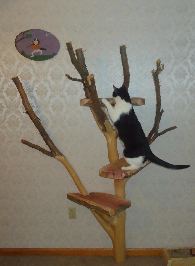 how to climb a tree to cut limbs