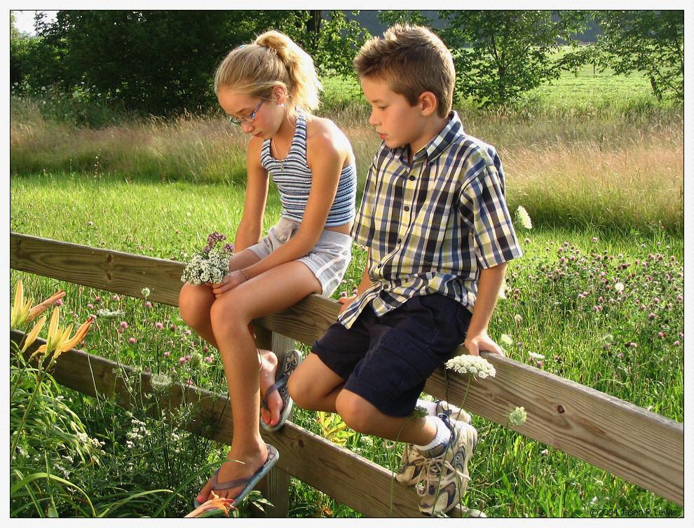 Fence Sitting by BranBlackbyrd