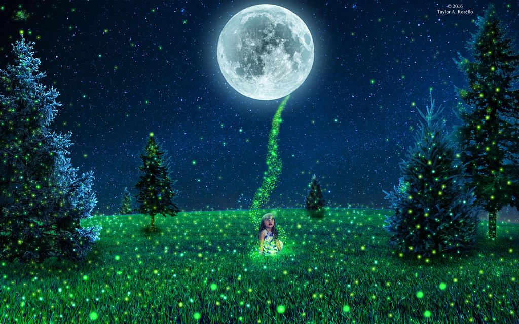 Fireflies by Nightmare116